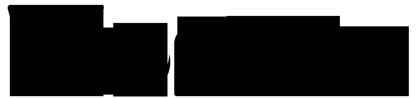 Agitateur Magnétique